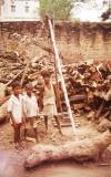 088-Pohřební-dřevosklad